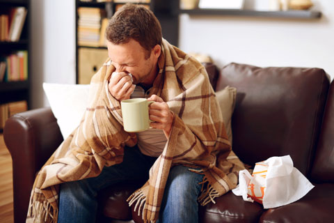 Clinical studies suggest echinacea can help prevent and treat the common cold and seasonal flu.